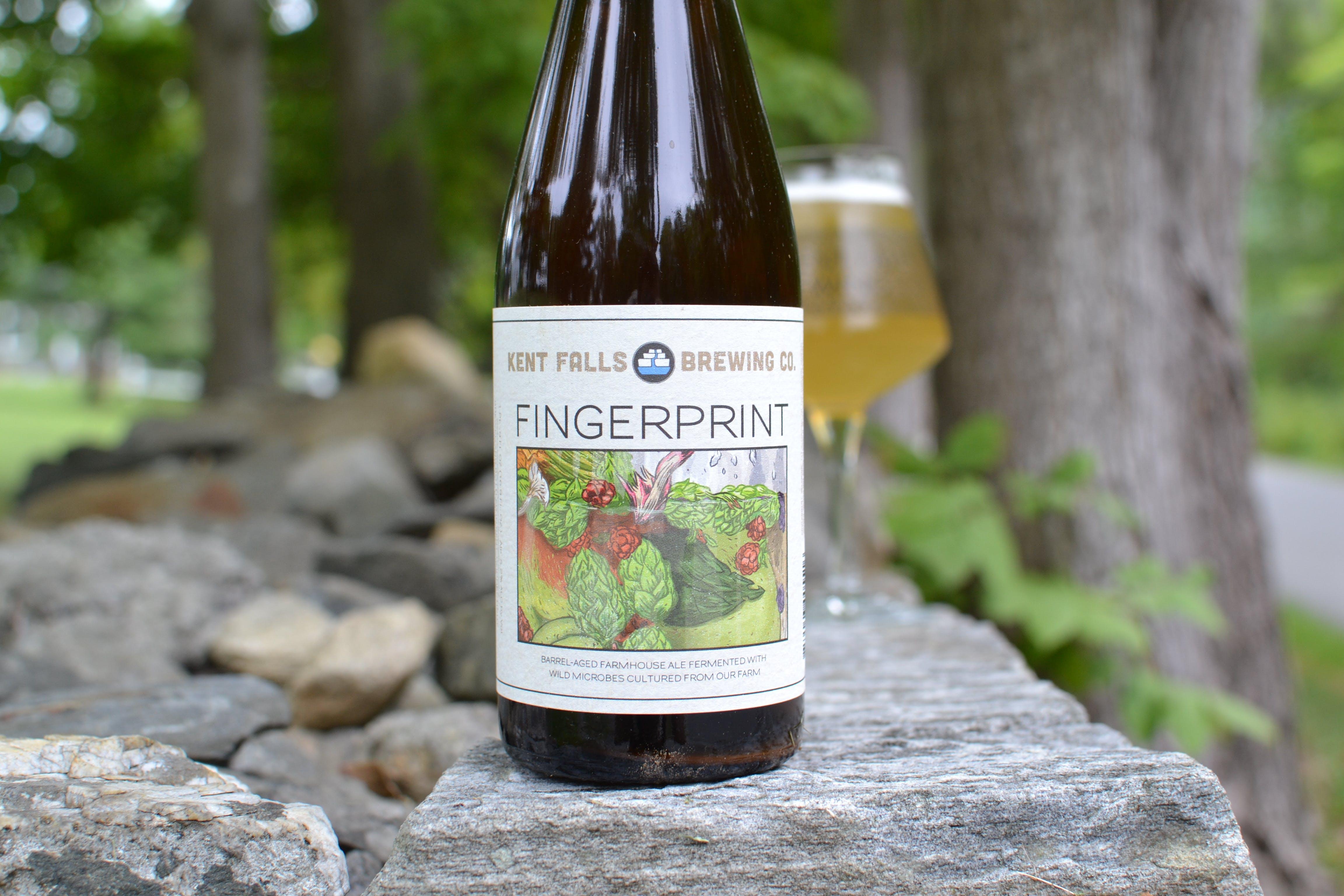 Fingerprint DSC_0333