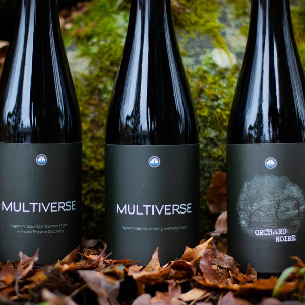 Multiverse Day